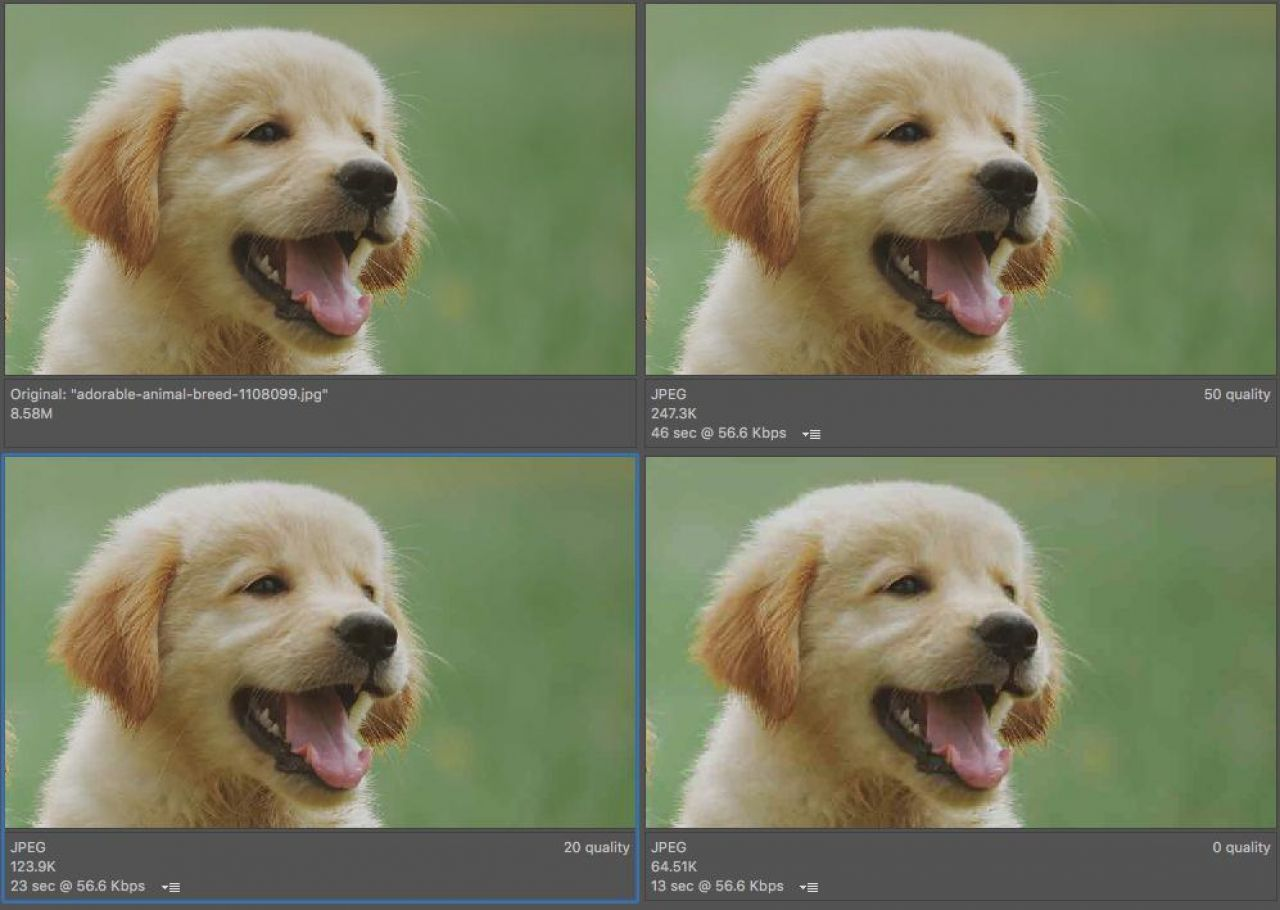 How To Reduce Crazy Big File Sizes With A Video Compressor